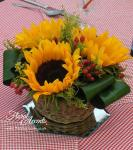 Low table centre of sunflowers, hypericum berries and solidago - in a basket