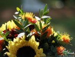 Mixed sunflower handtied bridal bouquet - with orange carthamus and deep red spray roses